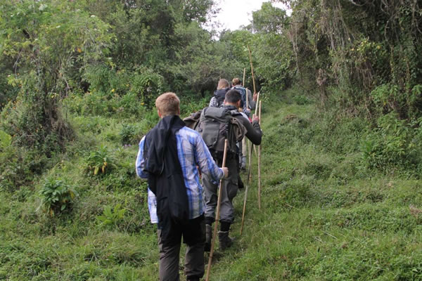 3 Day Mgahinga Hike