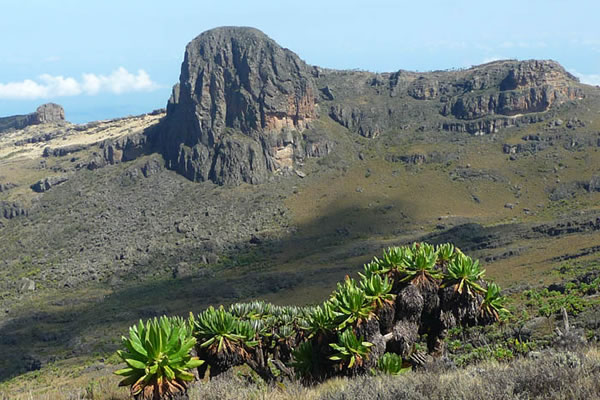 5 Day Adventure to Mt Elgon