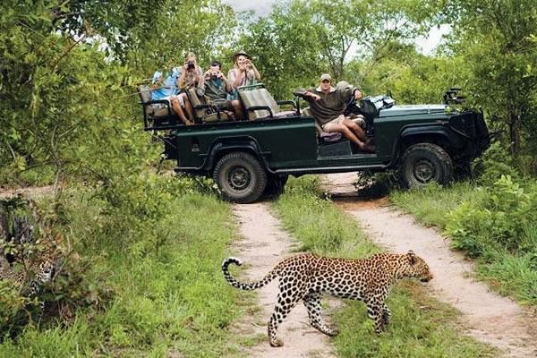 5 Day Great Safari to Tanzania