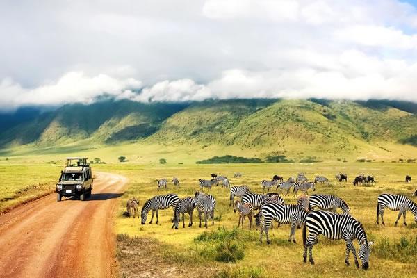 8 Day Kenya Amazing Tour